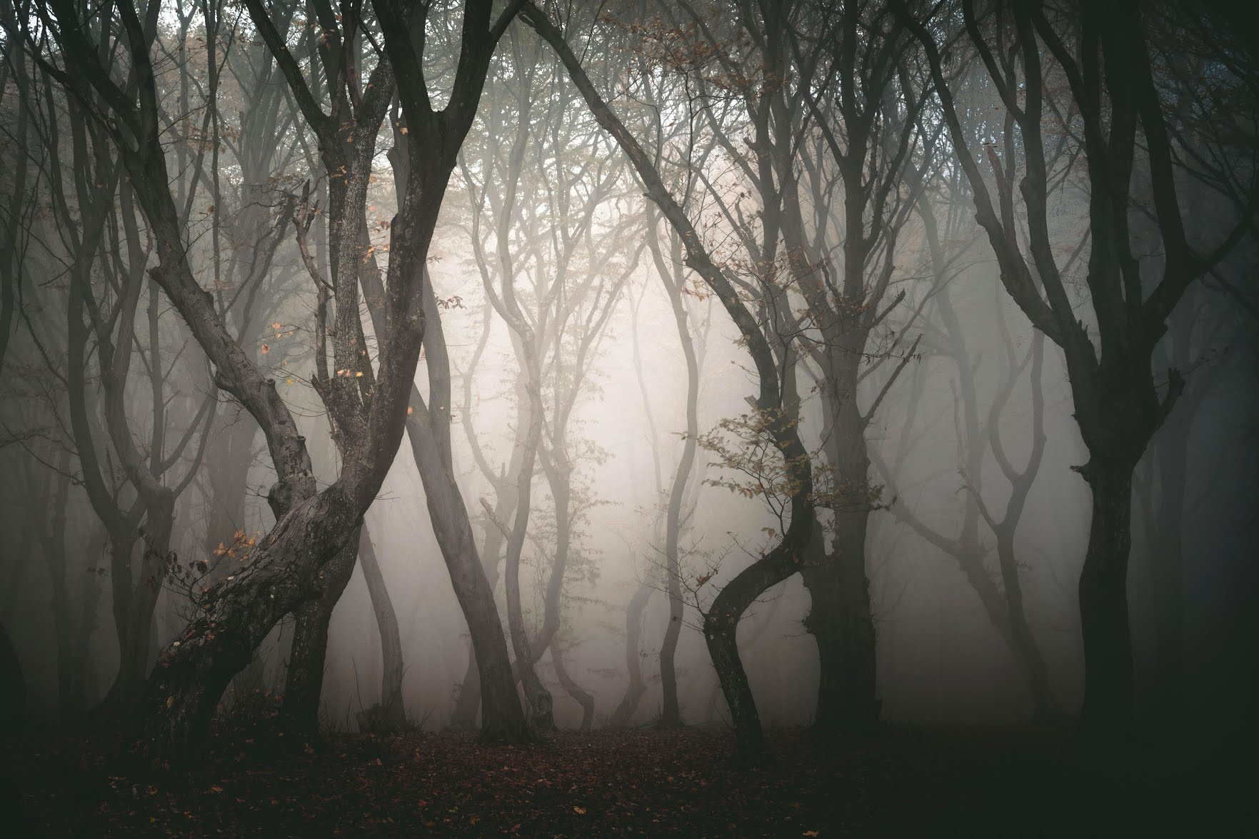 This image may contain Weather, Nature, Outdoors, Mist, and Fog
